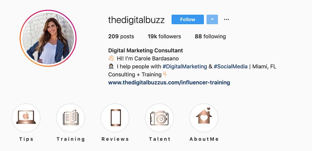 Example of thedigitalbuzz Instagram profile. Digital marketing and social media at the top.