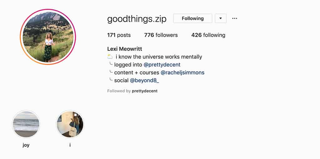 Example of Lexi Meowritt's Instagram profile showing her side projects