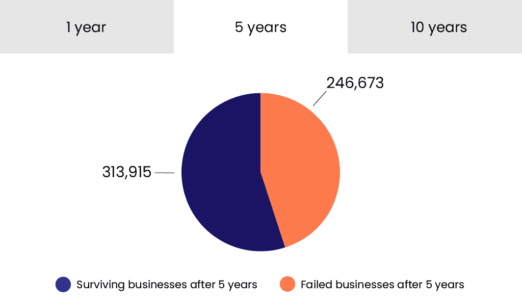 Pie graph showing the success rate of businesses after 5 years