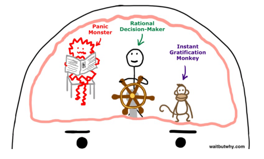 A procrastinating brain includes a rational decision maker, instant gratification monkey, and a panic monster